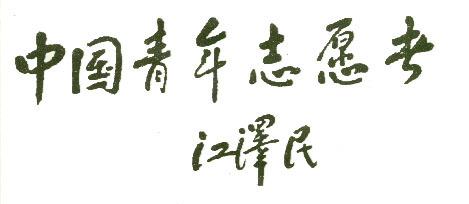 中国青年志愿者协会_好搜百科