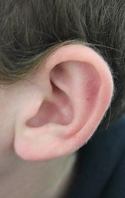 内耳包括前庭,半规管和耳蜗三部分,由结构复杂的弯曲管道组成,所以又