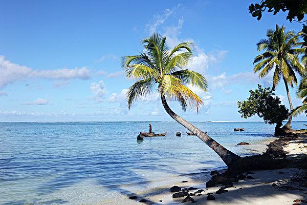 马达加斯加岛_好搜百科
