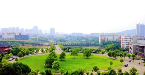 华中科技大学文华学院的什么专业最强?