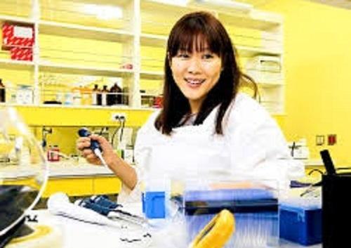 小保方晴子加入日本理化学研究所的若山照
