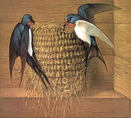雨燕是飞翔速度最快的鸟类