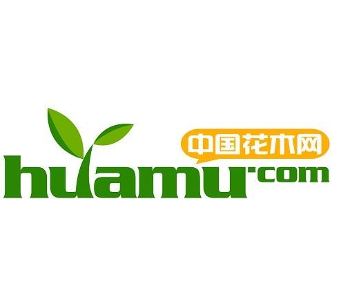 logo解说 基本简介 中国花木网是目前国内最专业的行业b2b网站之一