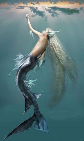 动物兄弟深海动物